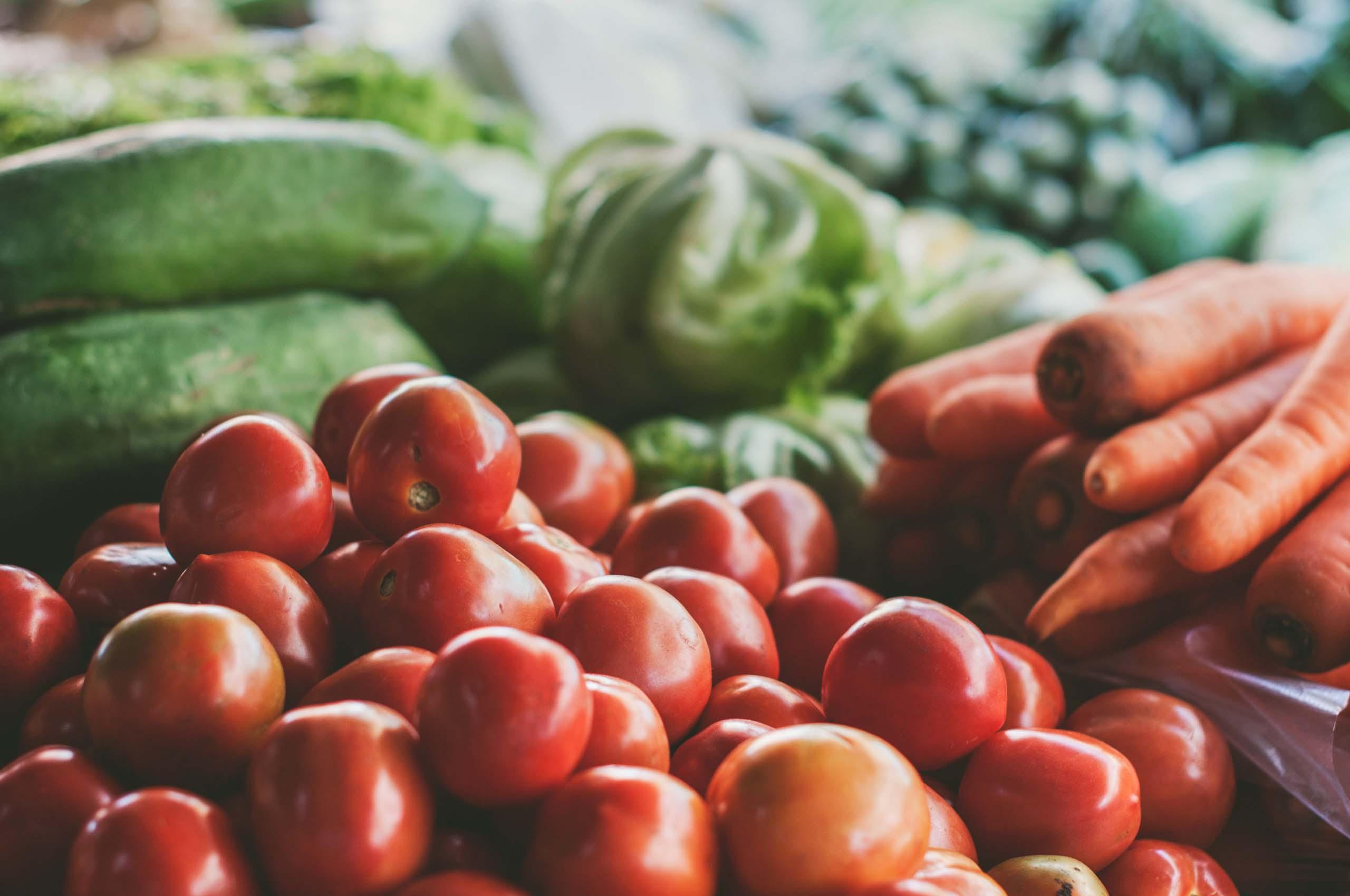 Gemüste. Tomaten, Gurken, Salat und Karotten.